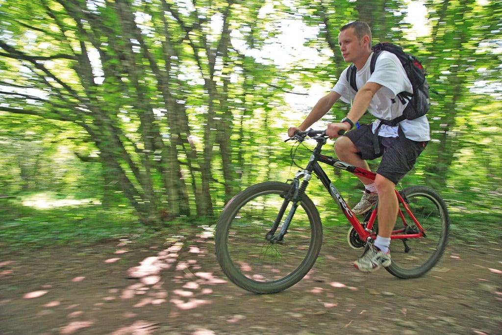 Fietsen, groene wegen en wielertoerisme